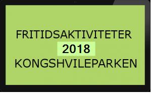 Fritidsaktiviteter 2018